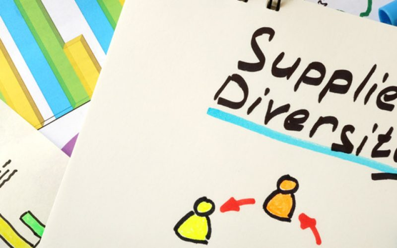 Supplier Diversity for Business Security