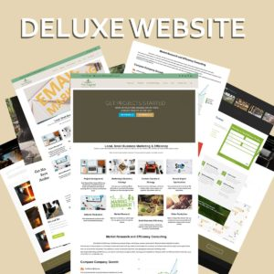 Deluxe Website Development
